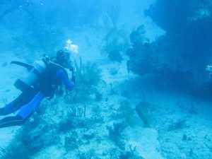 arrecifes de cuba_consecuencias por el cambio climático