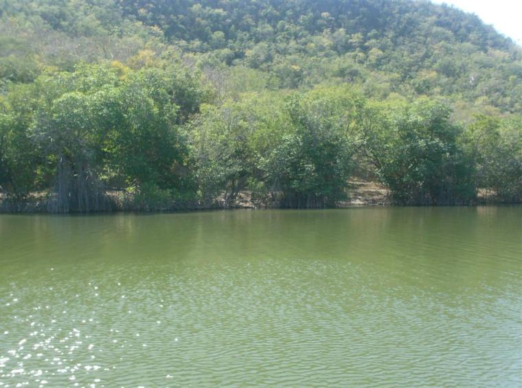 Laguna de Baconao