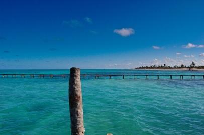 ecosistema de playa santa lucía