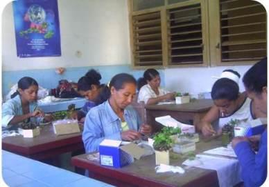 ciencia de cuba_ciencia cubana_Programa Producción Sostenible Alimentos en Santiago de cuba_1