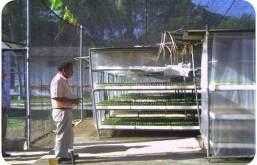 ciencia de cuba_ciencia cubana_Programa Producción Sostenible Alimentos en Santiago de cuba_3