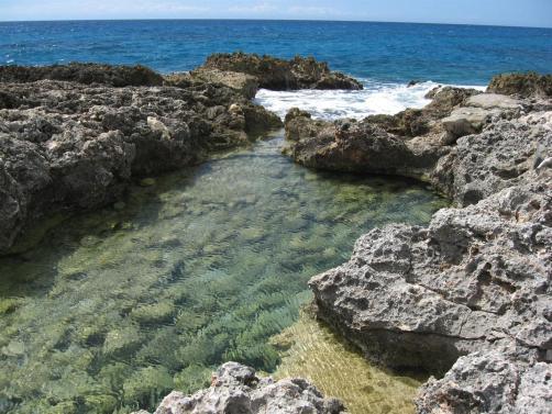 ciencia de cuba_ciencia cubana_Reserva Ecológica Siboney-Juticí_Zona costera_ecosistemas costeros_Santiago de Cuba_1