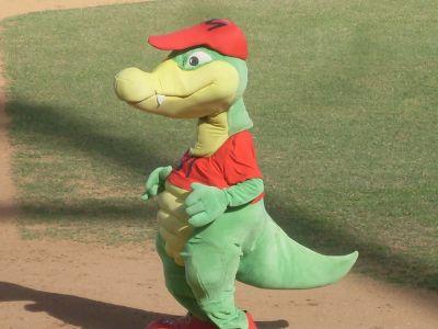 ciencia de cuba_ciencia cubana_Crocodylus acutus_cocodrilo cubano_reproducción en cautiverio