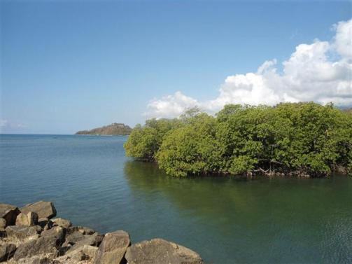 ciencia de cuba_ciencia cubana_III 3 tercer Taller Regional de Formación de capacidades para el manejo costero_municipio guamá (13)