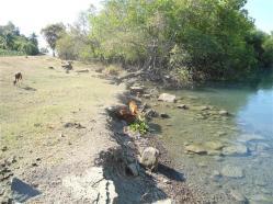 ciencia de cuba_ciencia cubana_III 3 tercer Taller Regional de Formación de capacidades para el manejo costero_municipio guamá (9)
