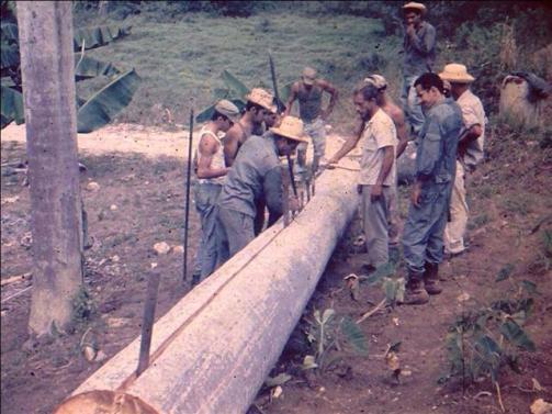 ciencia de cuba_ciencia cubana_Laboratorio Bioespeleológico Emil Racovitza_Reserva Ecológica Siboney Juticí (20)