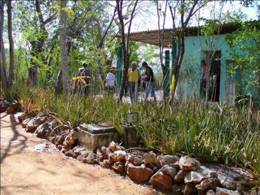 ciencia de cuba_ciencia cubana_Laboratorio Bioespeleológico Emil Racovitza_Reserva Ecológica Siboney Juticí (74)
