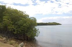 ciencia de cuba_ciencia cubana_manglares de cuba_santiago de cuba_III Taller Regional de Formación de Capacidades para el Manejo Costero (33)
