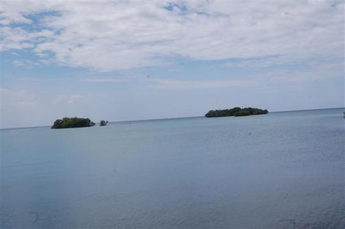 ciencia de cuba_ciencia cubana_manglares de cuba_santiago de cuba_III Taller Regional de Formación de Capacidades para el Manejo Costero (35)