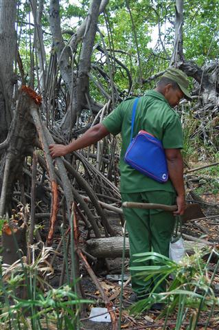 ciencia de cuba_ciencia cubana_manglares de cuba_santiago de cuba_III Taller Regional de Formación de Capacidades para el Manejo Costero (36)