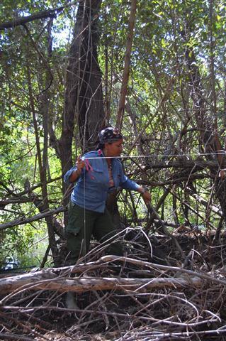 ciencia de cuba_ciencia cubana_manglares de cuba_santiago de cuba_III Taller Regional de Formación de Capacidades para el Manejo Costero (4)