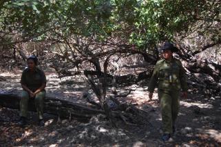 ciencia de cuba_ciencia cubana_manglares de cuba_santiago de cuba_III Taller Regional de Formación de Capacidades para el Manejo Costero (5)