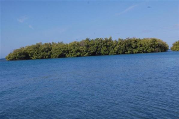 los manglares de guamá