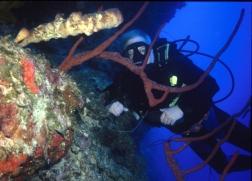 ciencia de cuba_ciencia cubana_patrimonio subacuático de cuba_2