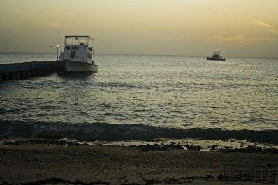 ciencia de cuba_ciencia cubana_península de Guanahacabibes_humedal_2