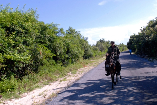 ciencia de cuba_ciencia cubana_península de Guanahacabibes_humedal_5