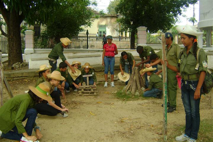 Actividades Del Cuidado Del Medio Ambiente La Repoblacion Forestal Y