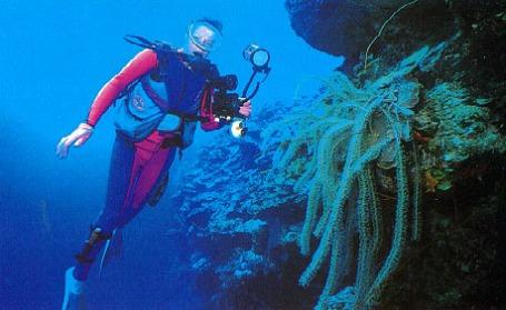 ciencia de cuba_ciencia cubana_zonas costeras de cuba_protección de los paisajes marinos cubanos_2