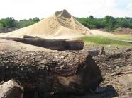 ciencia de cuba_ciencia cubana_gasificador de biomasa forestal_empresa gran piedra baconao (2)