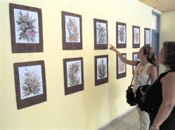 ciencia de cuba_portal de la ciencia cubana_II simposio internacional de ecología y conservacion S.O.S. Natura (7)