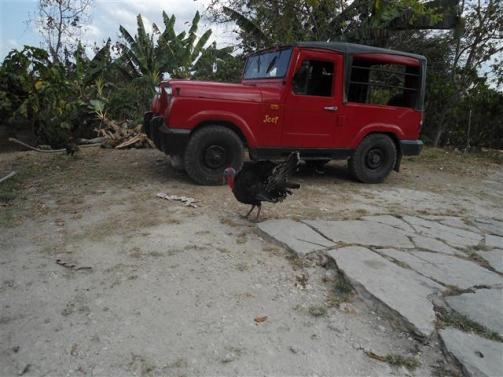 ciencia de cuba_portal de la ciencia cubana_protección de especies cinegéticas (15)
