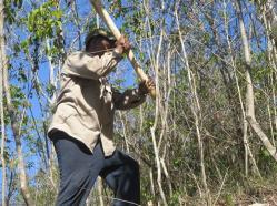ciencia de cuba_portal de la ciencia cubana_protección de especies cinegéticas (22)