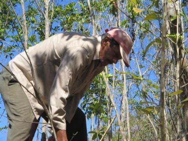 ciencia de cuba_portal de la ciencia cubana_protección de especies cinegéticas (24)