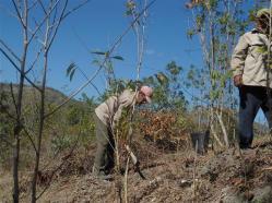 ciencia de cuba_portal de la ciencia cubana_protección de especies cinegéticas (51)