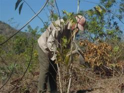 ciencia de cuba_portal de la ciencia cubana_protección de especies cinegéticas (52)