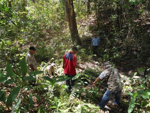 ciencia de cuba_portal de la ciencia cubana_protección de especies cinegéticas (56)