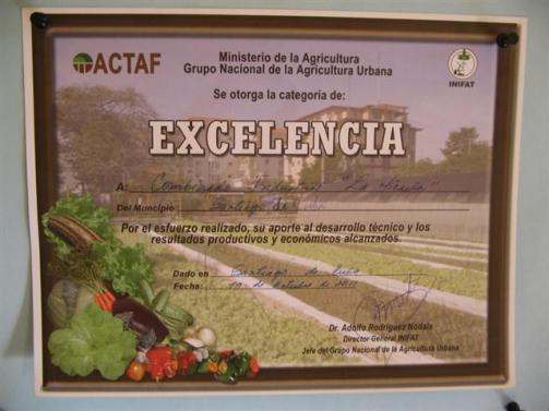ciencia de cuba_portal de la ciencia cubana_usos de la moringa en cuba (5)
