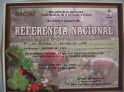 ciencia de cuba_portal de la ciencia cubana_usos de la moringa en cuba (6)
