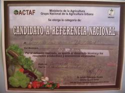 ciencia de cuba_portal de la ciencia cubana_usos de la moringa en cuba (7)