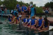 ciencia de cuba_ciencia cubana_beneficios de banarse con delfines