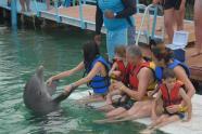 ciencia de cuba_ciencia cubana_beneficios de banarse con delfines_1