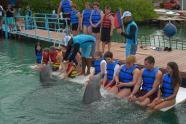 ciencia de cuba_ciencia cubana_beneficios de banarse con delfines_2