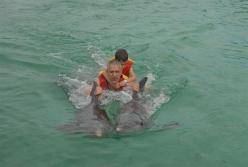 ciencia de cuba_ciencia cubana_beneficios de banarse con delfines_5