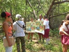 ciencia de cuba_portal de la ciencia cubana_dia mundial de las aves en cuba (3)