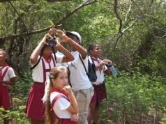 ciencia de cuba_portal de la ciencia cubana_dia mundial de las aves en cuba (4)