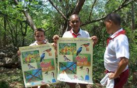 ciencia de cuba_portal de la ciencia cubana_dia mundial de las aves en cuba (6)