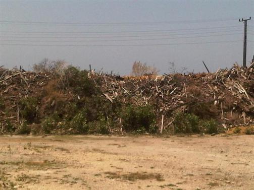 ciencia de cuba_gasificador de biomasa forestal (11)