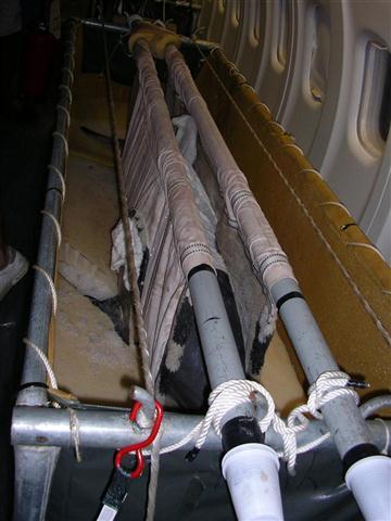 ciencia de cuba_portal de la ciencia cubana_captura de delfines (16)